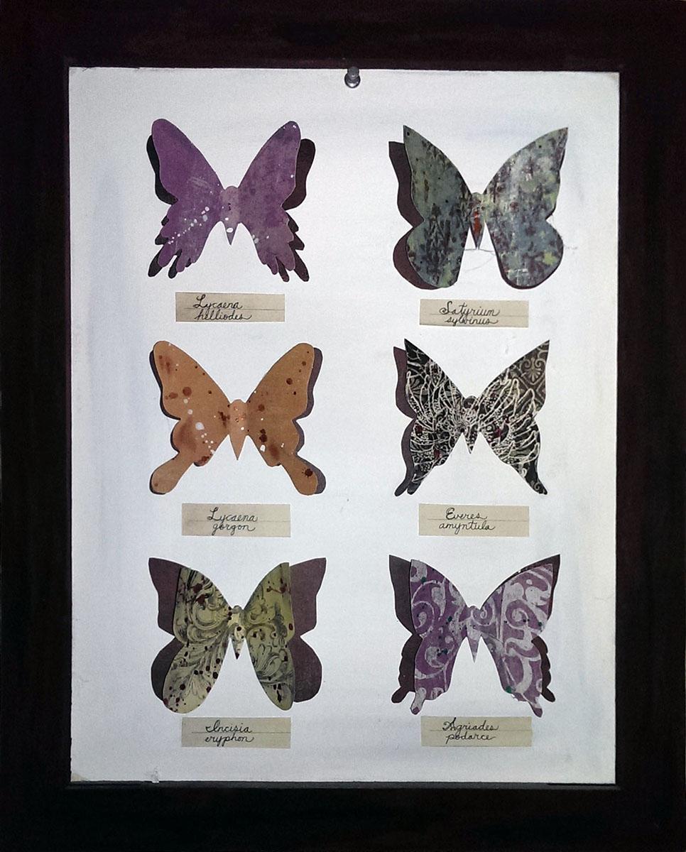 butterfly.jpg (101738 bytes)